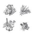 hand drawn herbs and spices piles set vector image