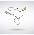 symbol dove of peace vector image