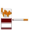 Carton of cigarettes vector image
