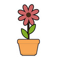 cute sunflower plant in pot vector image