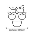 fruit trees shrubs linear icon vector image