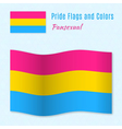 Pansexual pride flag with correct color scheme vector image vector image