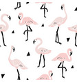 seamless pattern with flamingo and hand drawn vector image