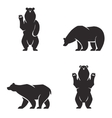 silhouettes of the bears set vector image vector image