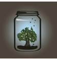 Tree in the jar vector image vector image