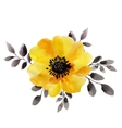 Watercolor of yellow flower isolated vector image vector image