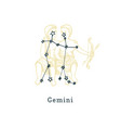 zodiacal constellation gemini on background of vector image vector image