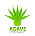 agave plant logo element over white vector image vector image