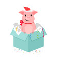 cartoon pig in gift box vector image vector image