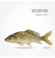 Modern polygon of carp fish vector image vector image