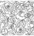 delicate line rose pattern vector image