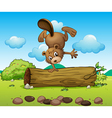 A playful beaver vector image vector image
