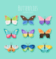 butterfly collection spring vector image vector image