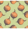 Hand drawn seamless pattern of onions vector image