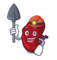 miner spleen mascot cartoon style vector image vector image