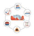 round infographics pet care stuff set elements vector image vector image