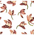 tropical vintage beige brown orchid flower pattern vector image vector image