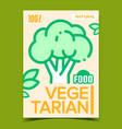 vegetarian food broccoli advertising banner vector image vector image