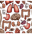 anatomy seamless pattern background of human organ vector image