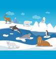 arctic landscape with different polar animals vector image vector image