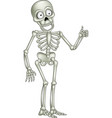 cartoon skeleton giving thumb up vector image vector image