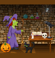 cartoon witch holding a broomstick in the room vector image vector image