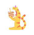 cute cartoon tiger biting piece of cake happy vector image