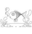 Line drawing fish and seaweed for kids painting