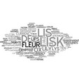 lisk word cloud concept vector image vector image