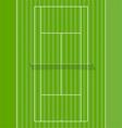grass court vector image