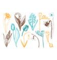 botanical springtime plants vector image vector image