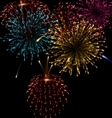 Festive abstract firework bursting in various vector image vector image