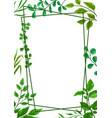 frame sprigs with green leaves vector image vector image