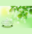 fresh green leaves on natural background for world vector image vector image