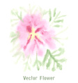 Gentle pink watercolor flower vector image vector image