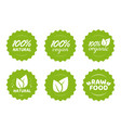 organic natural vegan and raw food nutrition icon vector image