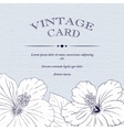 congratulations card design template with hibiscus vector image vector image