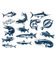 fishes species isolated icons