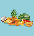 fruits variety fresh harvest vector image