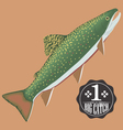 salmon fish vector image vector image