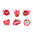 set logos splashing pomegranate juice on vector image