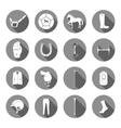 Set of Icons and Sign of Polo vector image