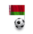 Soccer Balls or Footballs with flag of Belarus vector image vector image