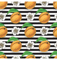 striped seamless pattern with ripe apricot vector image