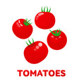 tomatoes logo templates vector image vector image