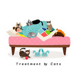treatment by cats vector image vector image