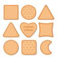 biscuit cookie snacks cookies biscuits vector image