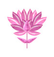 conceptual abstract pink flower stylized lotus vector image vector image