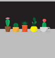 five cactus in the pots vector image vector image
