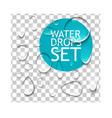 Pure Water Drops Set vector image